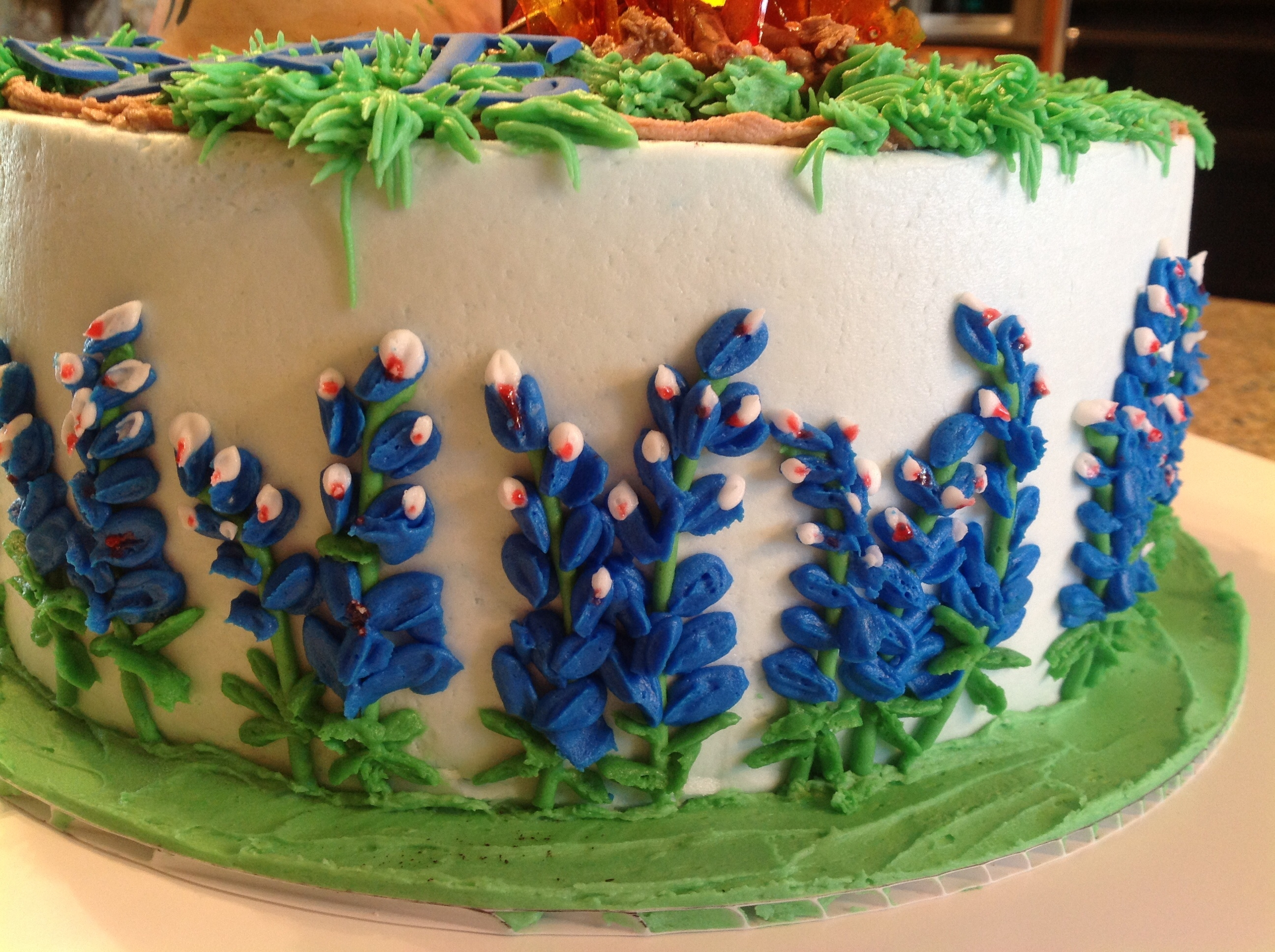 Bluebonnet Legends Cakecentral Com