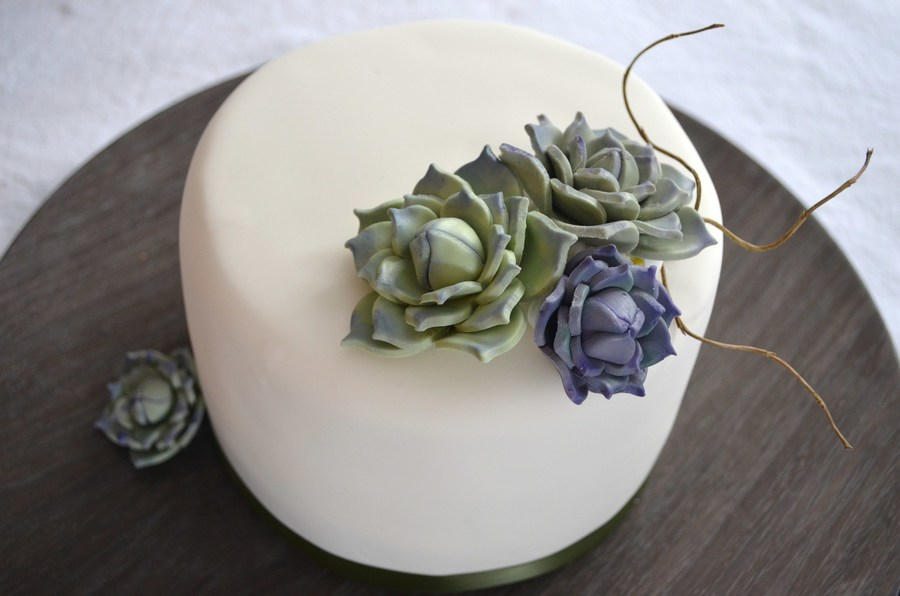 Rustic Succulents  on Cake Central