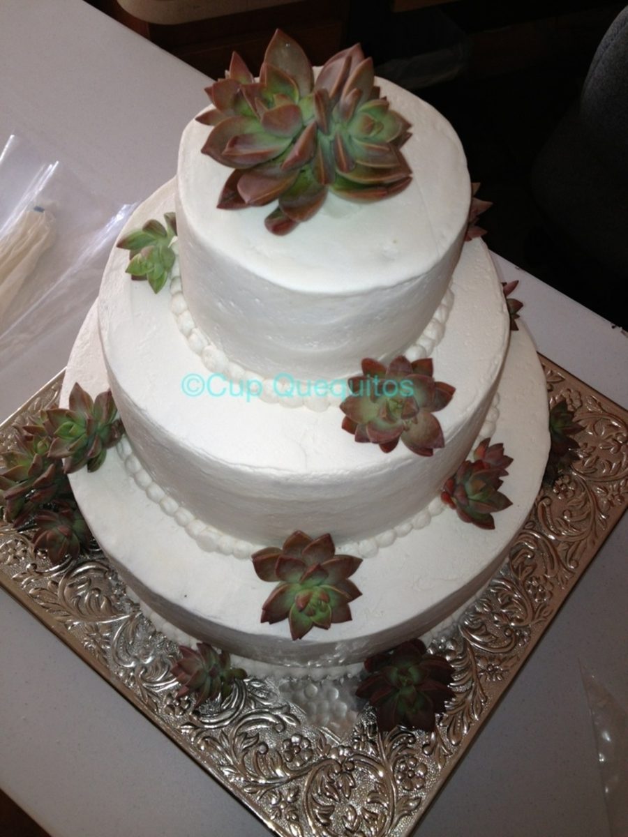 Succulent Wedding Cake on Cake Central