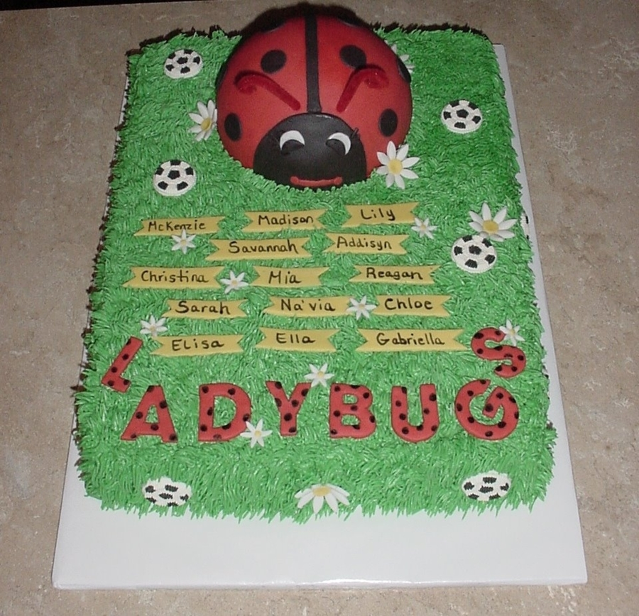 Soccer Ladybugs Daisies on Cake Central