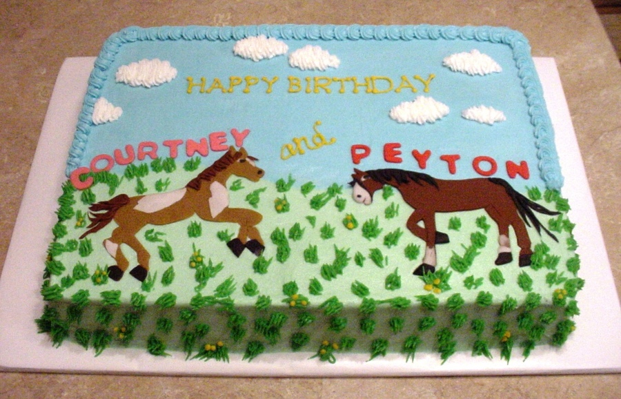 Horses For Twin's Birthday on Cake Central