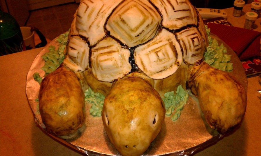 Tortoise Birthday Cake Recipe