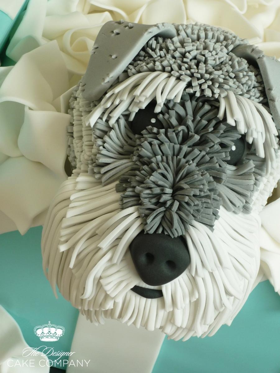 Schnauzer Dog Gift Box Cake Cakecentral Com