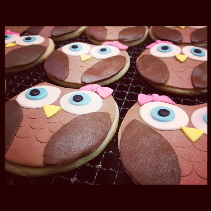 Owl Cookies To Match 1St Birthday Cake on Cake Central