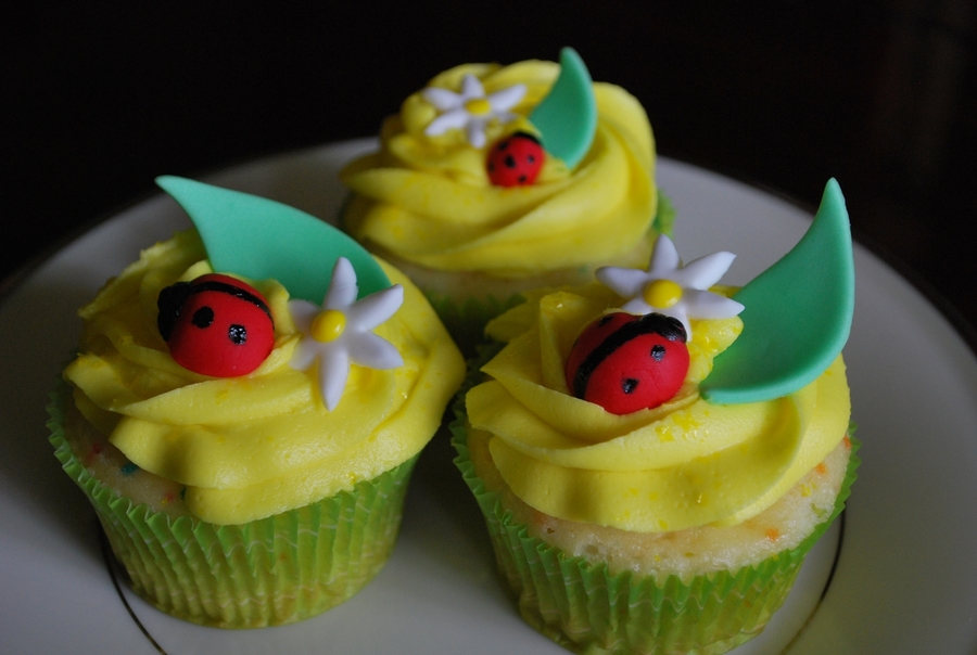 Ladybug Cupcakes on Cake Central