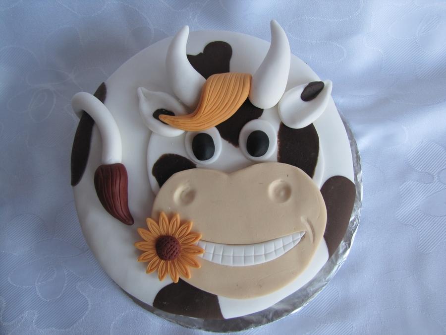 Cow S Milk Free Cake Recipe