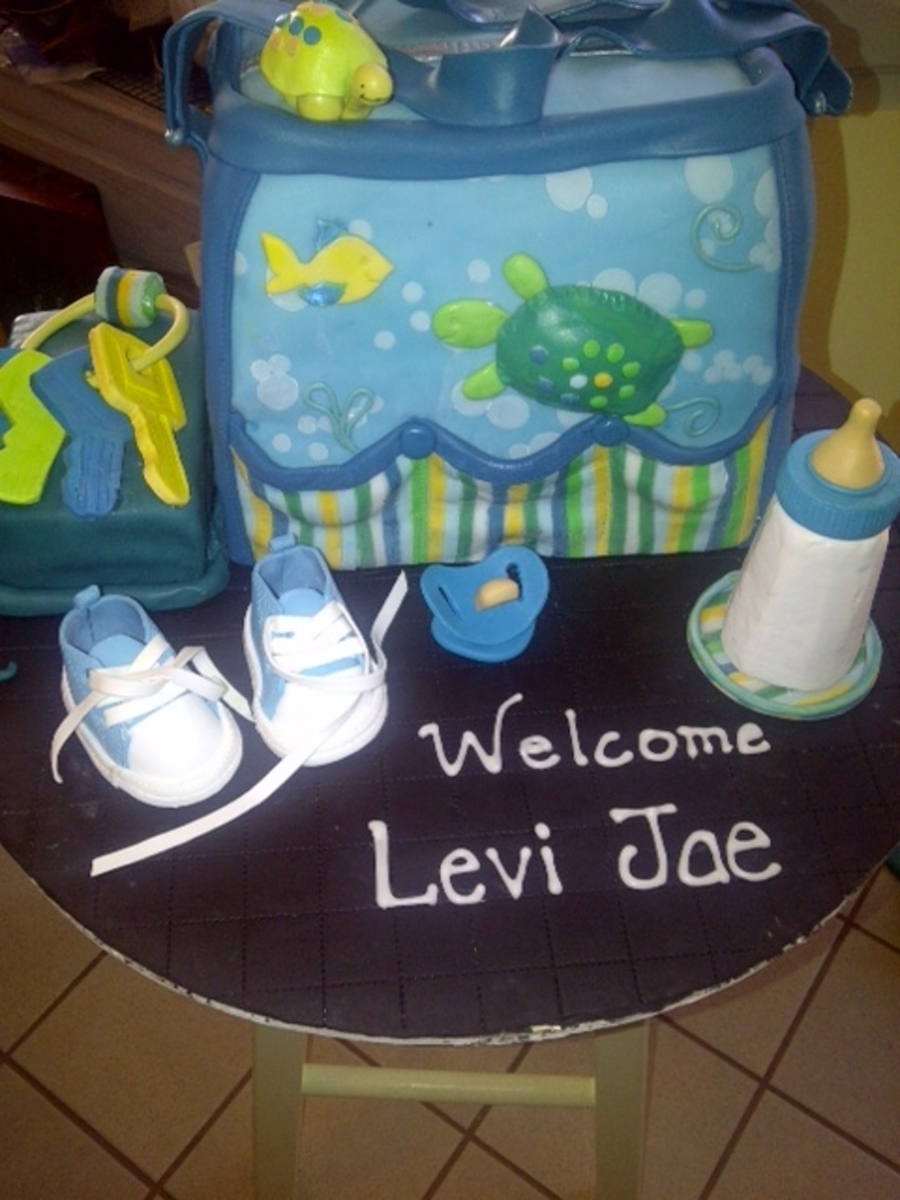 Turtle Diaper Bag  on Cake Central