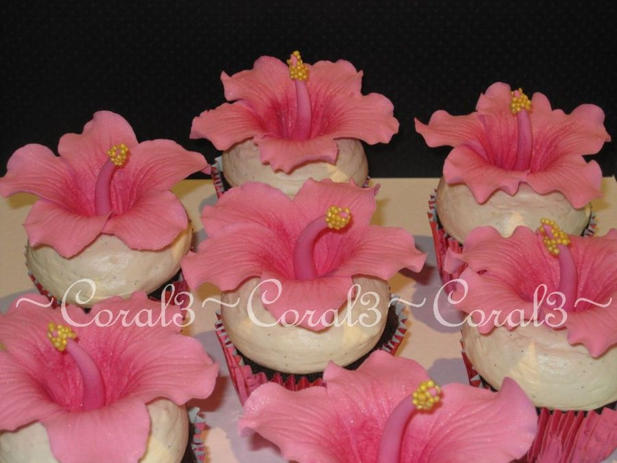 Hibiscus on Cake Central