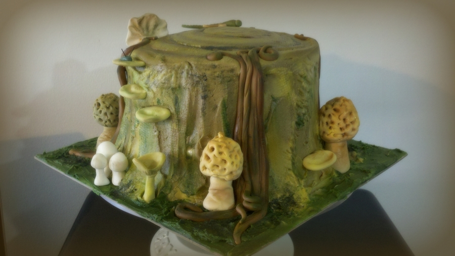 Tree Trunk Cake Morel Mushrooms on Cake Central