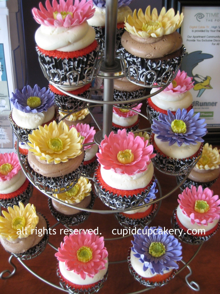 Gerber Daisy Cupcakes on Cake Central