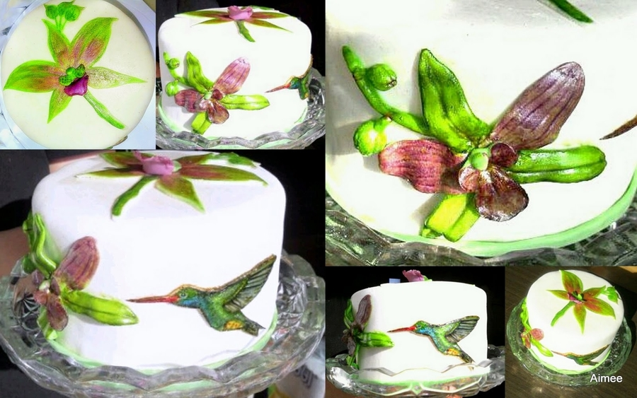 Painted Hummingbird And Orchids on Cake Central