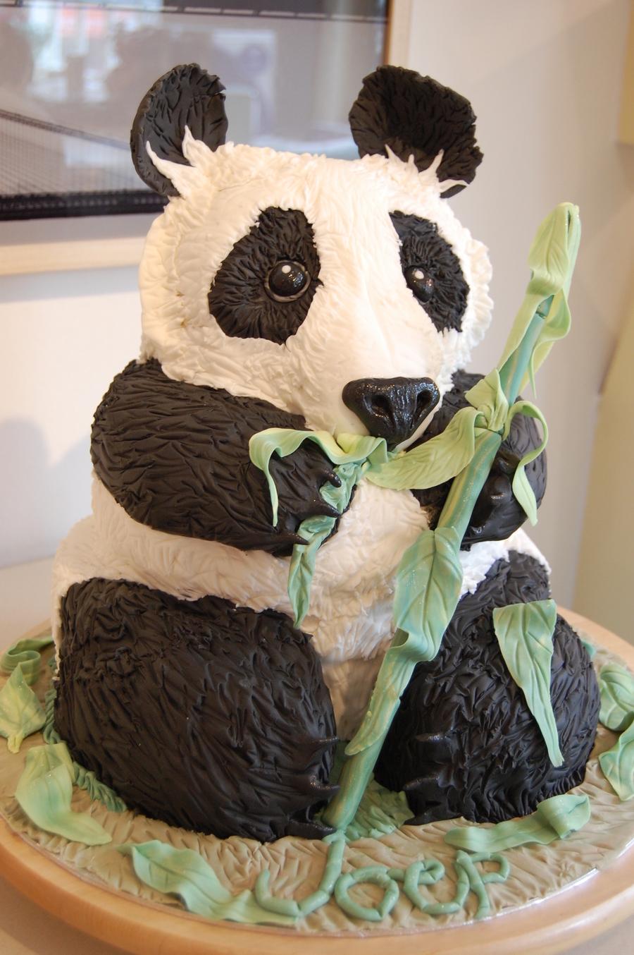 Amazing Giant Panda Birthday Cake Cakecentral Com Personalised Birthday Cards Veneteletsinfo