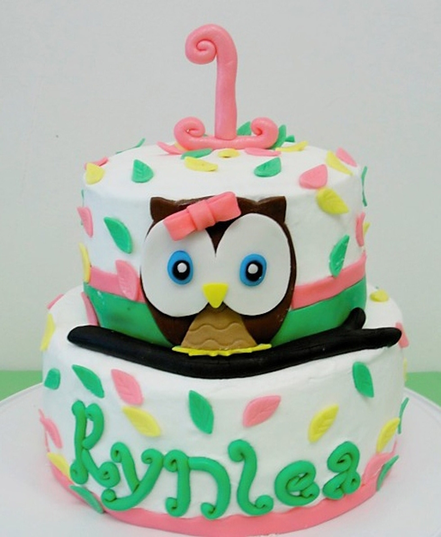 Look Whoo's One Owl Birthday Cake on Cake Central