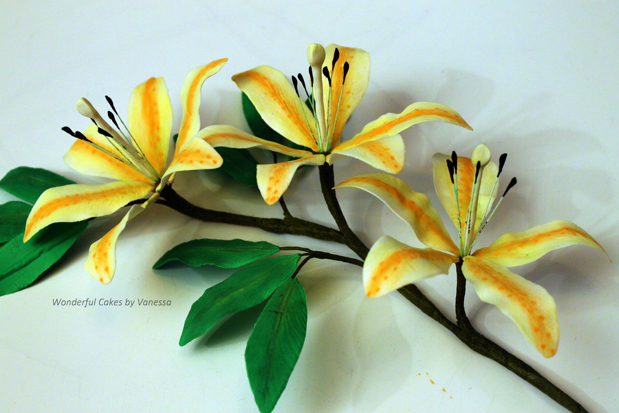 Lilies Made During The Course Pme Professional Diploma Sugar Flowers on Cake Central