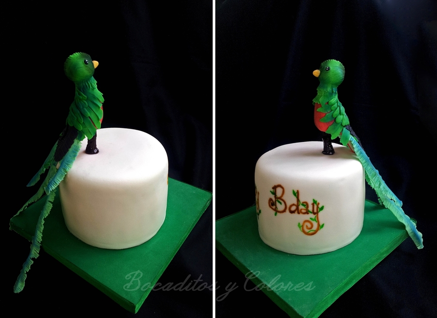Resplendent Quetzal on Cake Central