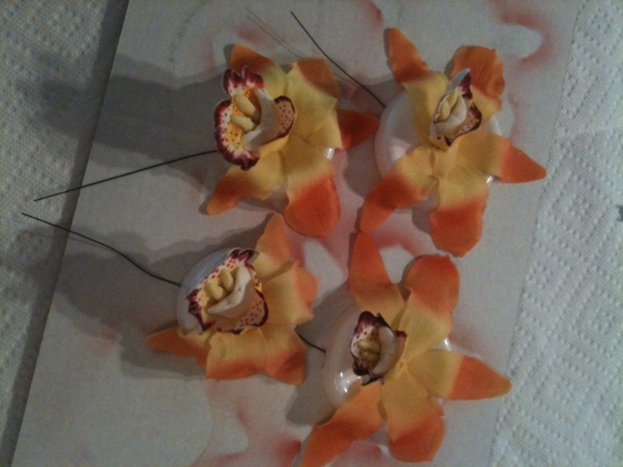 Sunset Cymbidium Orchids on Cake Central