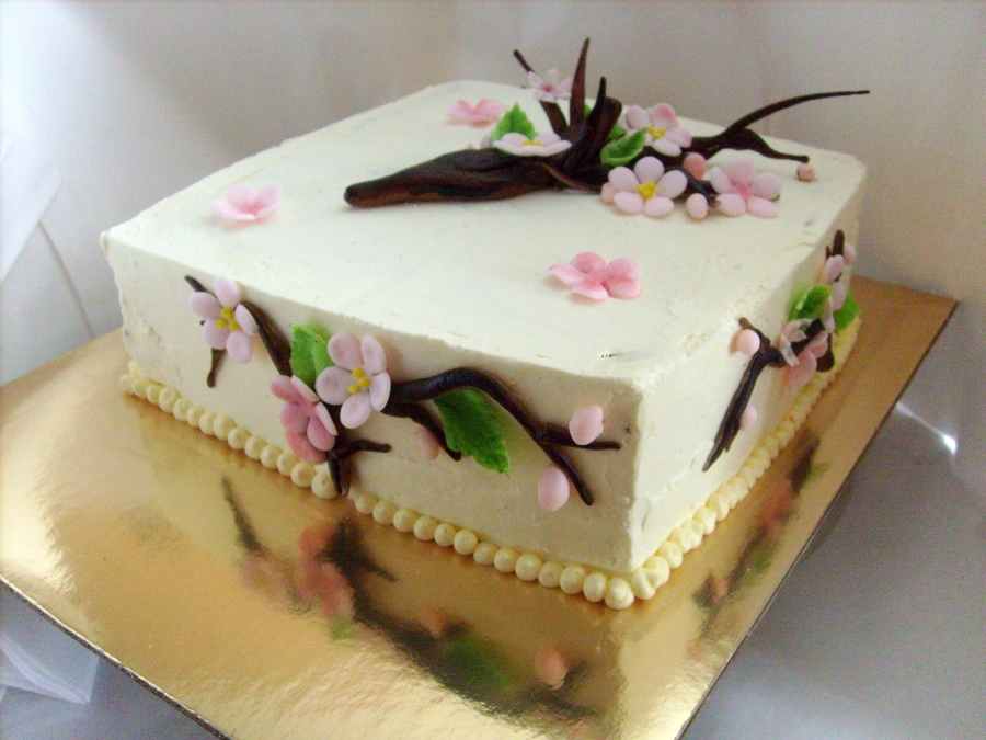 Cherry Blossoms on Cake Central