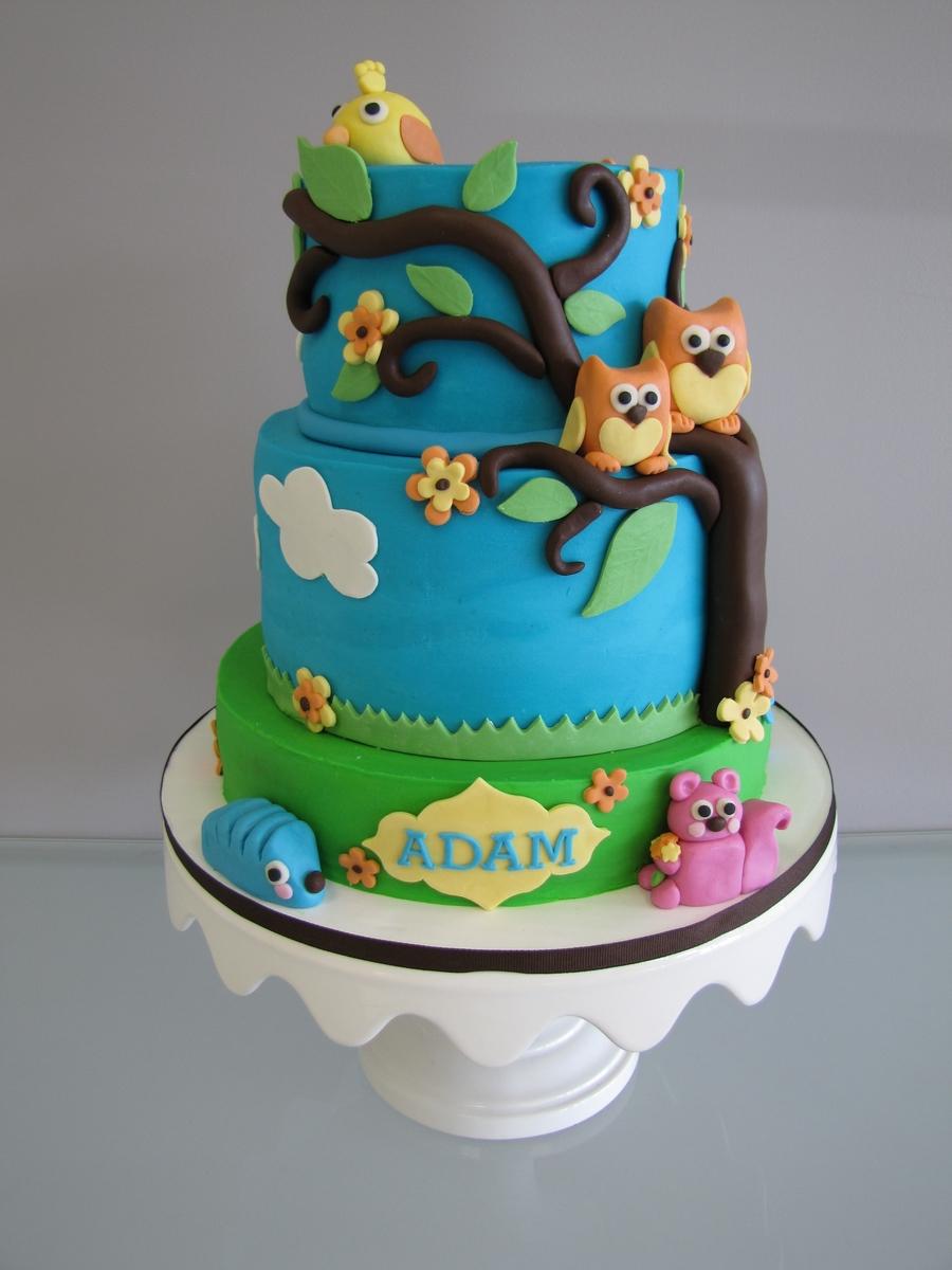 Owl Boy Baby Shower Cakes