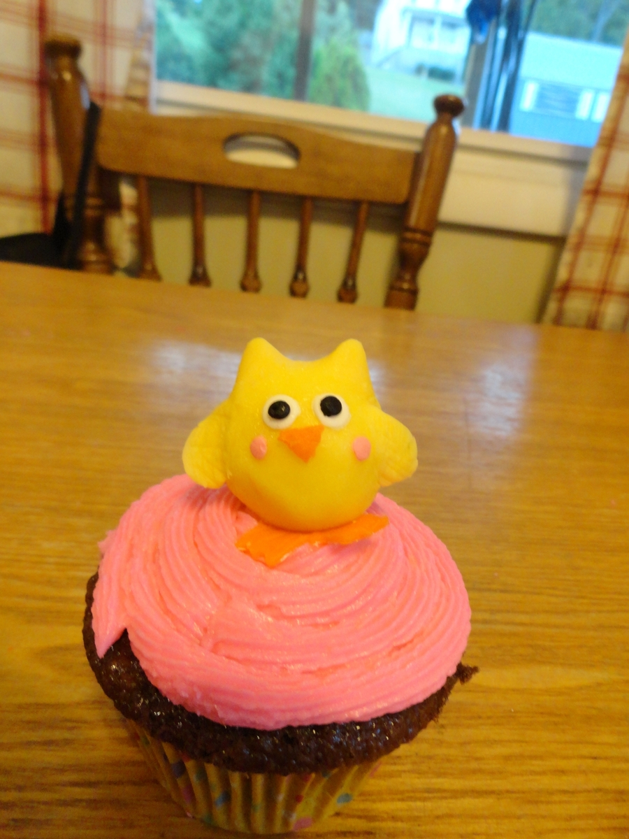 Baby Owl Cupcakes on Cake Central