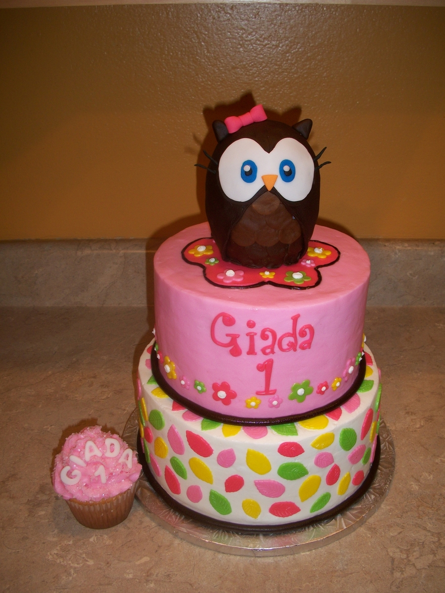 Girl Owl Cake  on Cake Central