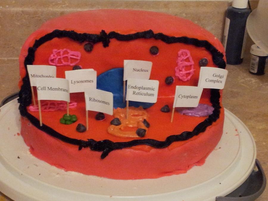Edible Science Project By My Sonplant Cell on Cake Central