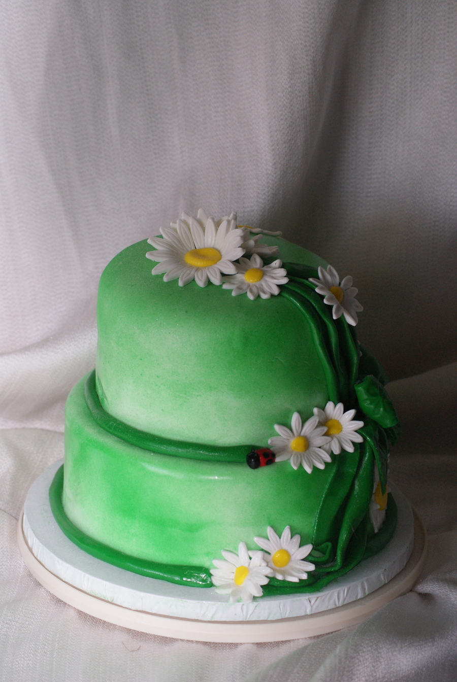 Marvelous Daisy Birthday Cakecentral Com Funny Birthday Cards Online Alyptdamsfinfo