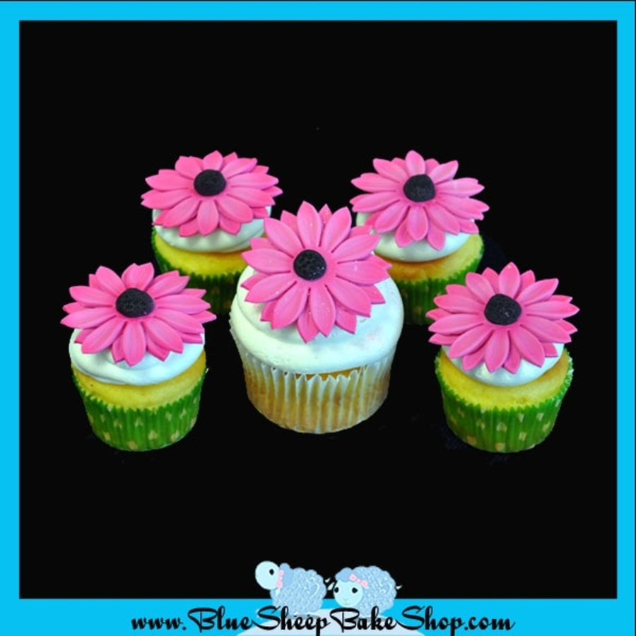 Gerbera Daisy Cupcakes on Cake Central