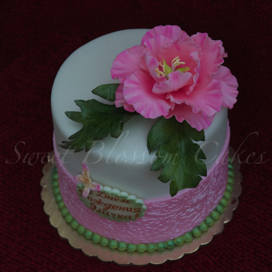 Peony Cake on Cake Central