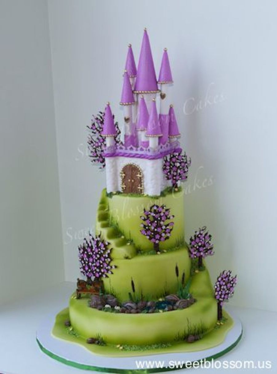 Castle Cake Made It For National Capital Area Cake Show Everything Edible on Cake Central