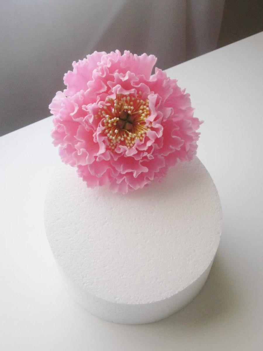 Open Peony  on Cake Central