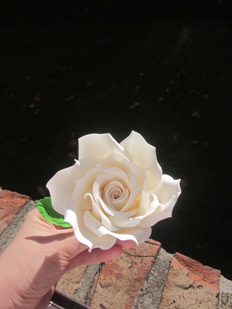 White Rose  on Cake Central