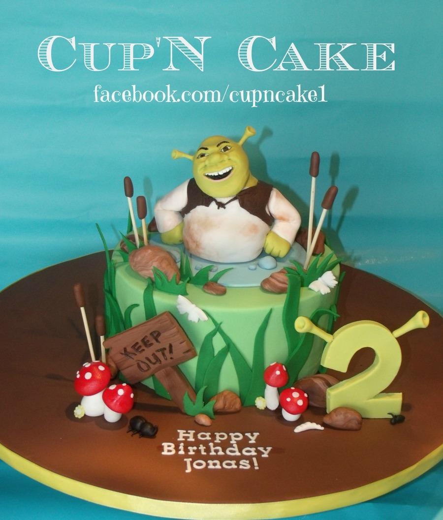 Admirable Shrek Birthday Cake Cakecentral Com Funny Birthday Cards Online Elaedamsfinfo
