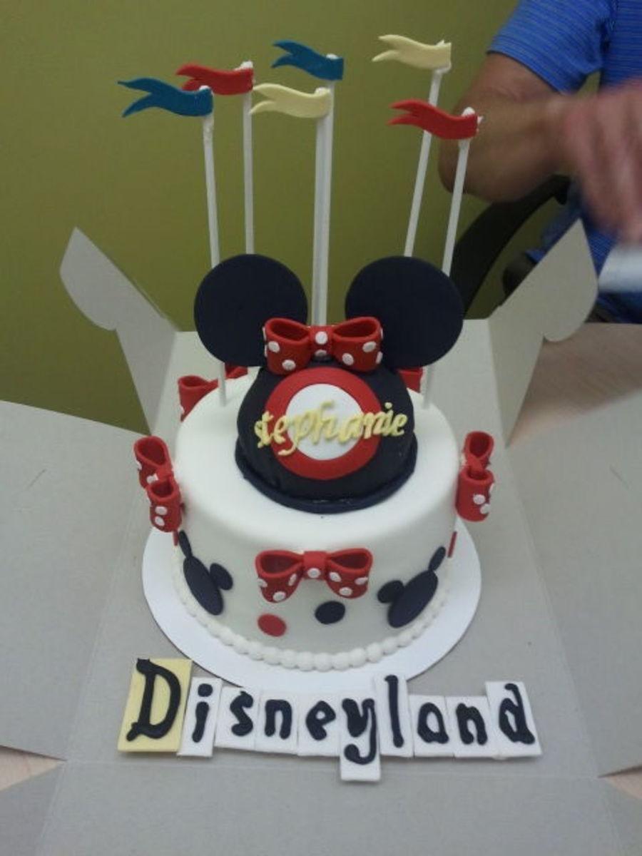 Pleasant Retro Disneyland Cake Cakecentral Com Personalised Birthday Cards Paralily Jamesorg