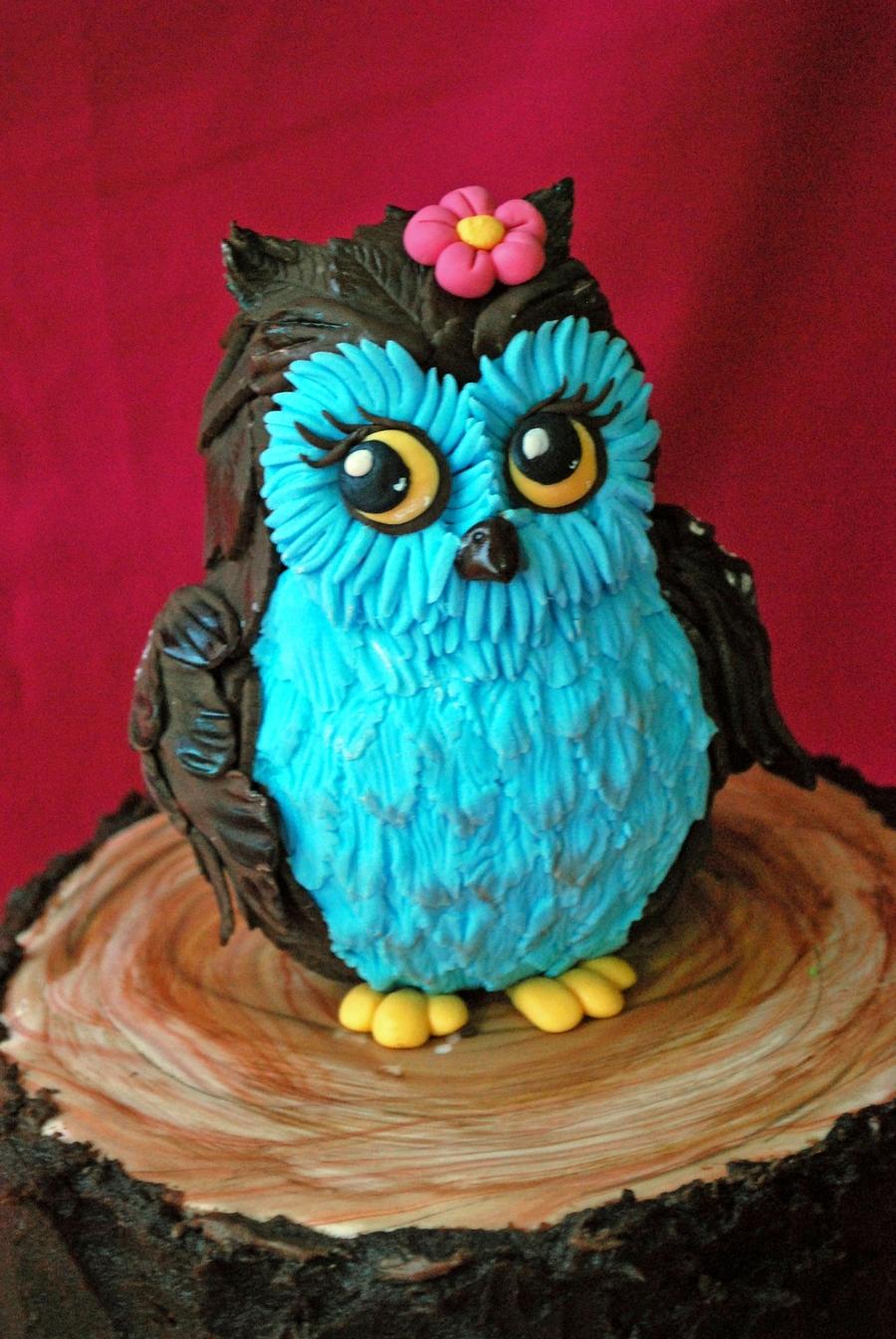 Owl Cake Cakecentral Com