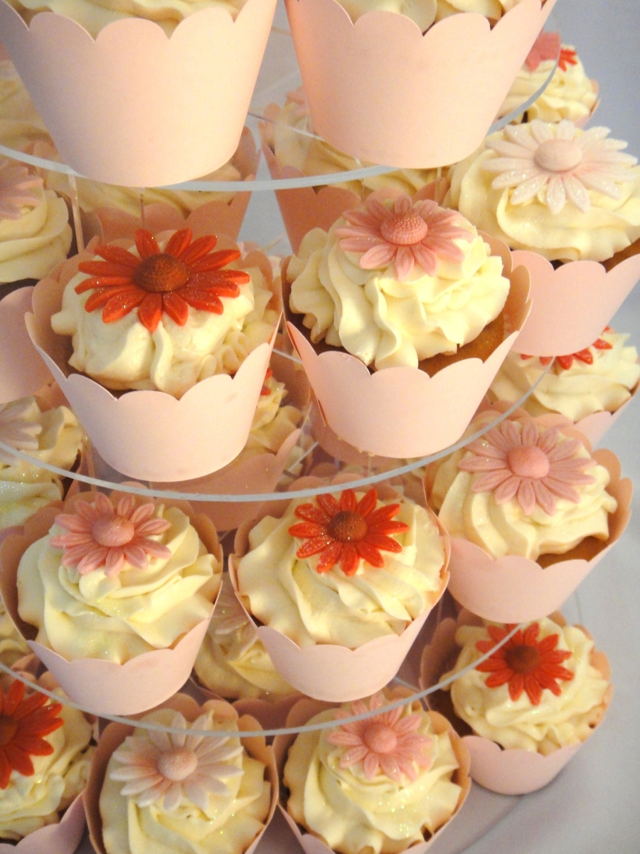 Gerbera Cupcakes on Cake Central