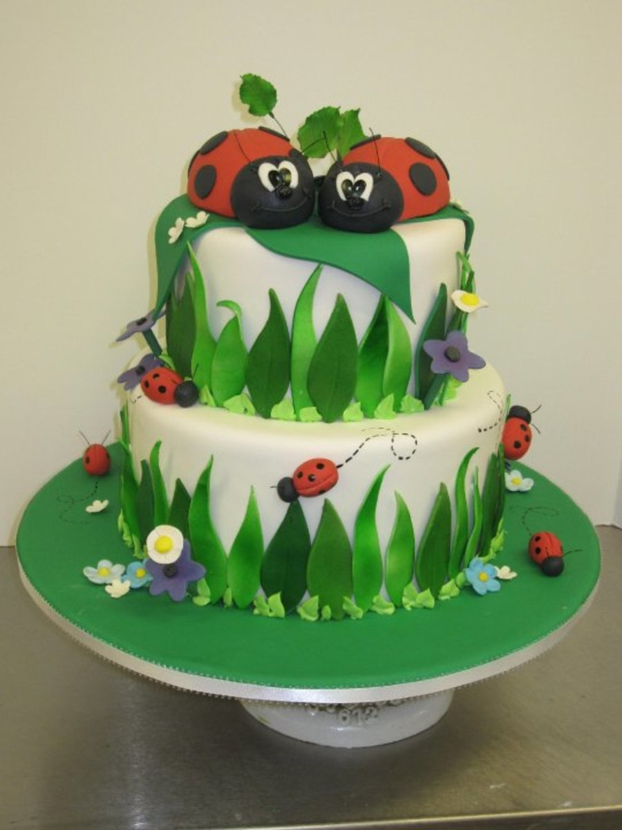 Lovely Ladybugs on Cake Central