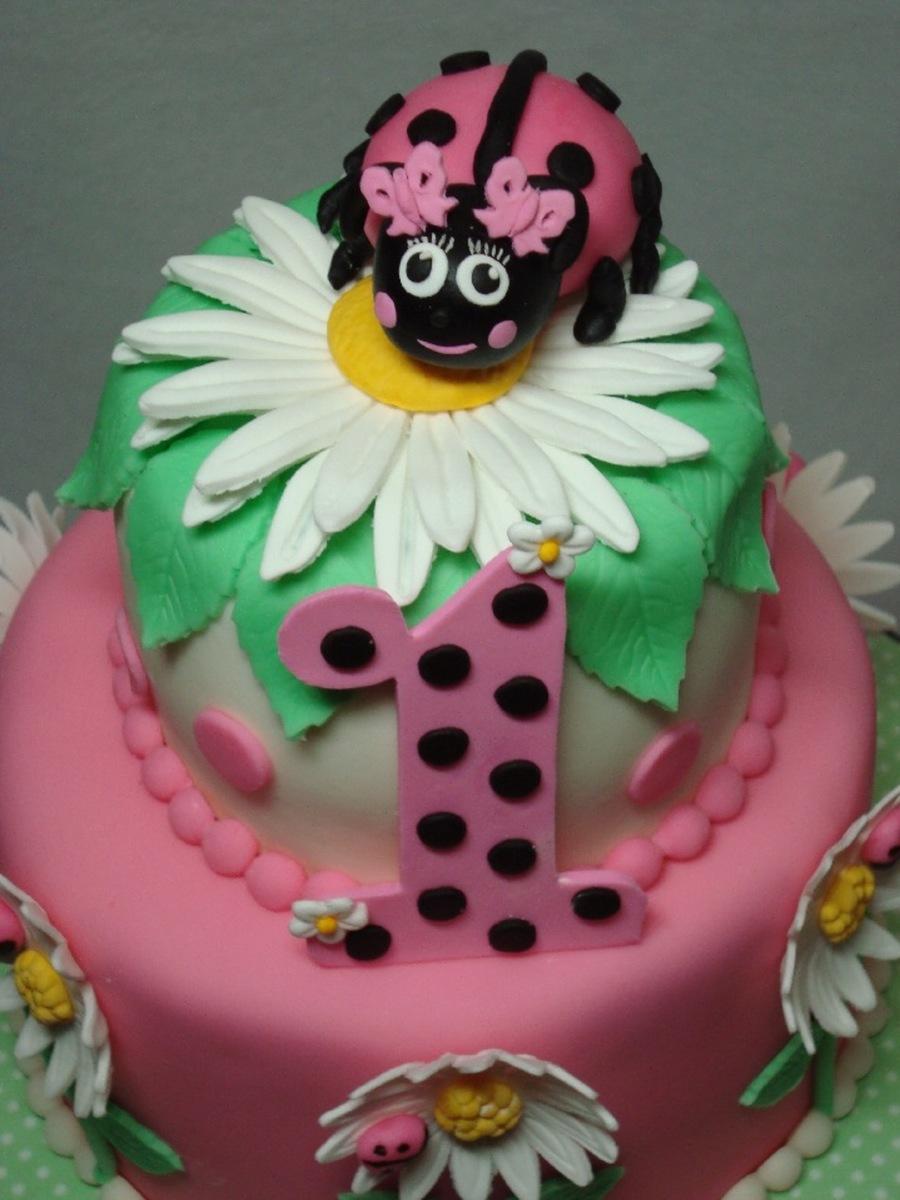 Ladybug Cake And Cupcake Tower Cakecentral Com