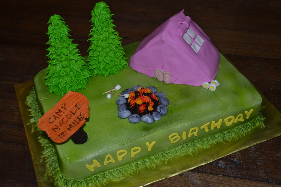 Camping Scene With Pink Tent Amp Campfire on Cake Central