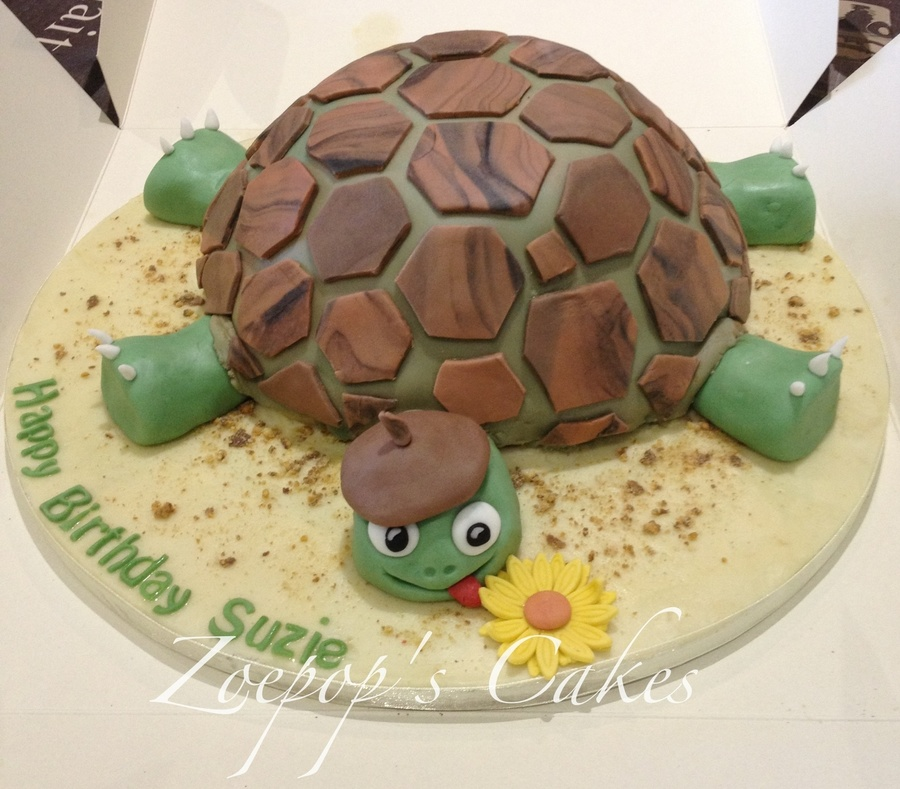 Tortoise Birthday Cake Recipe
