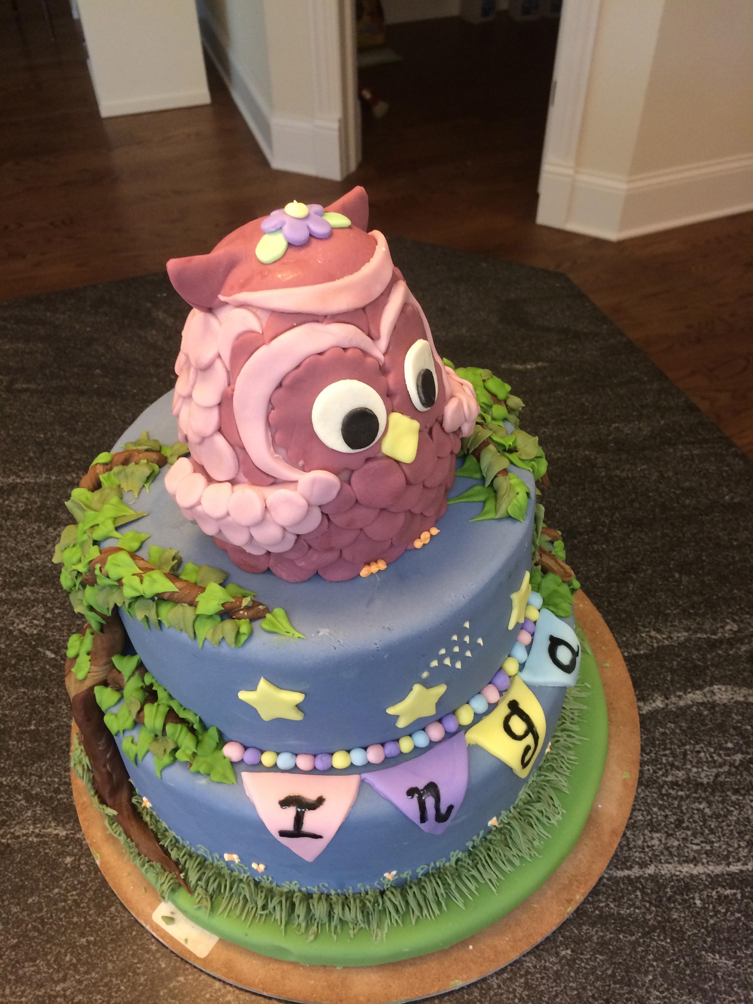 Woodland Owl 1st Birthday Cake Cakecentral