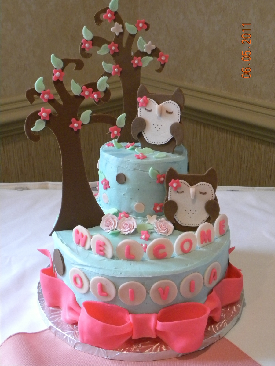 Owl Cake For Baby Shower Cakecentral Com