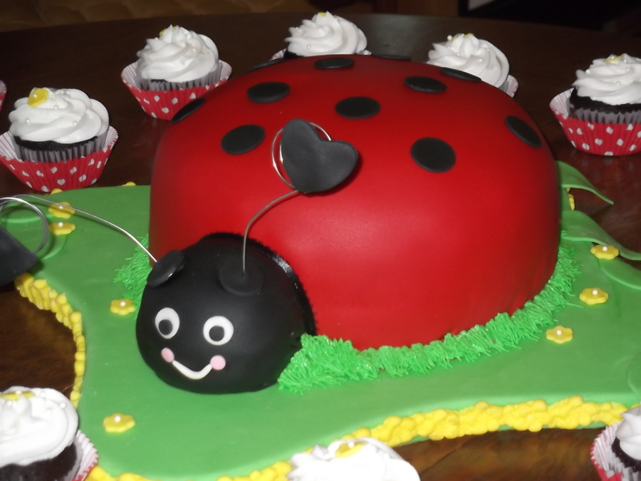 Ladybug Theme Cake on Cake Central