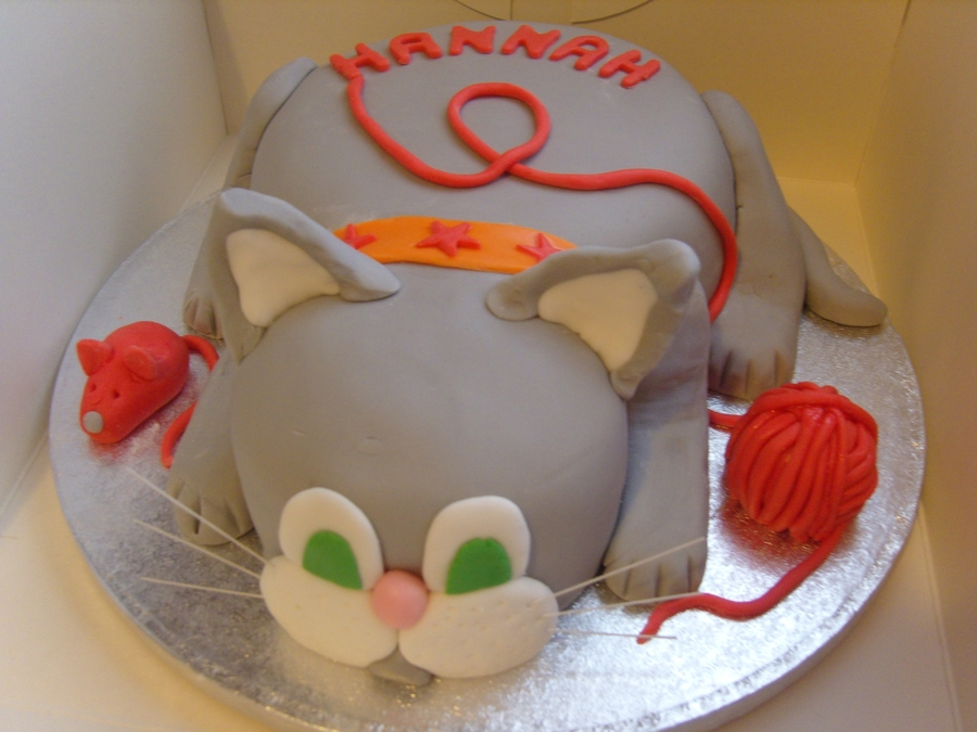 3D Cat Cake  on Cake Central