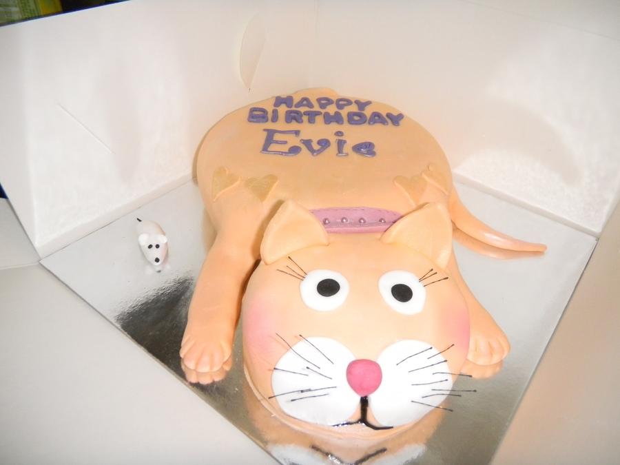 Ginger Cat Birthday Cake Cakecentral