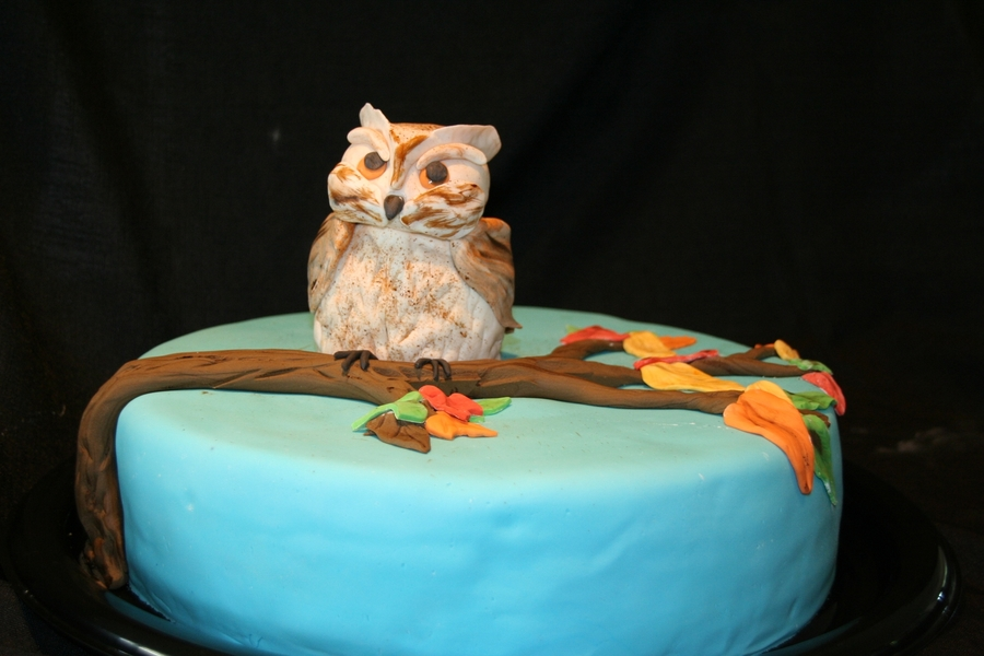 Fall Owl on Cake Central