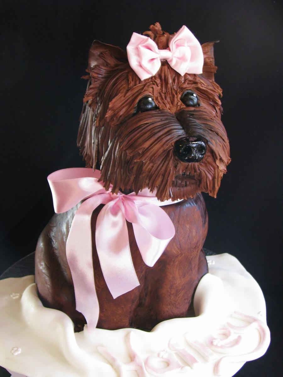 Yorkie Dog Cake Cakecentral Com