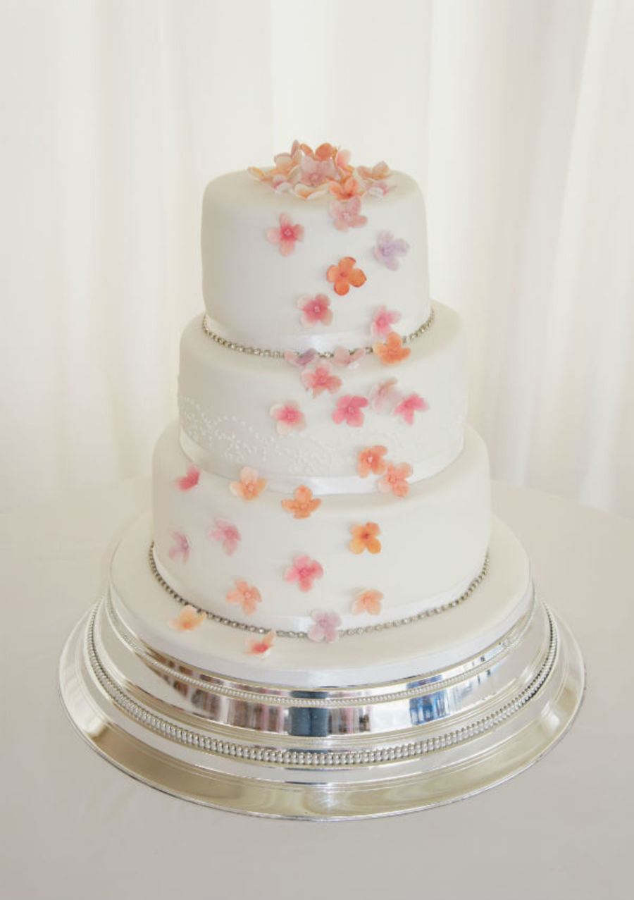 White And Coral Wedding Cake With Royal Iced Piping Detailed Lace  on Cake Central