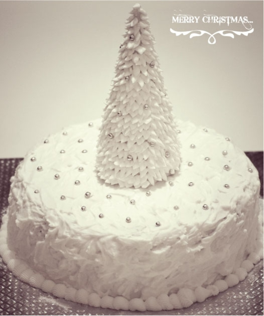 "9"" Boozy Christmas Cake Covered In Marzipan And Royal Icing  on Cake Central"