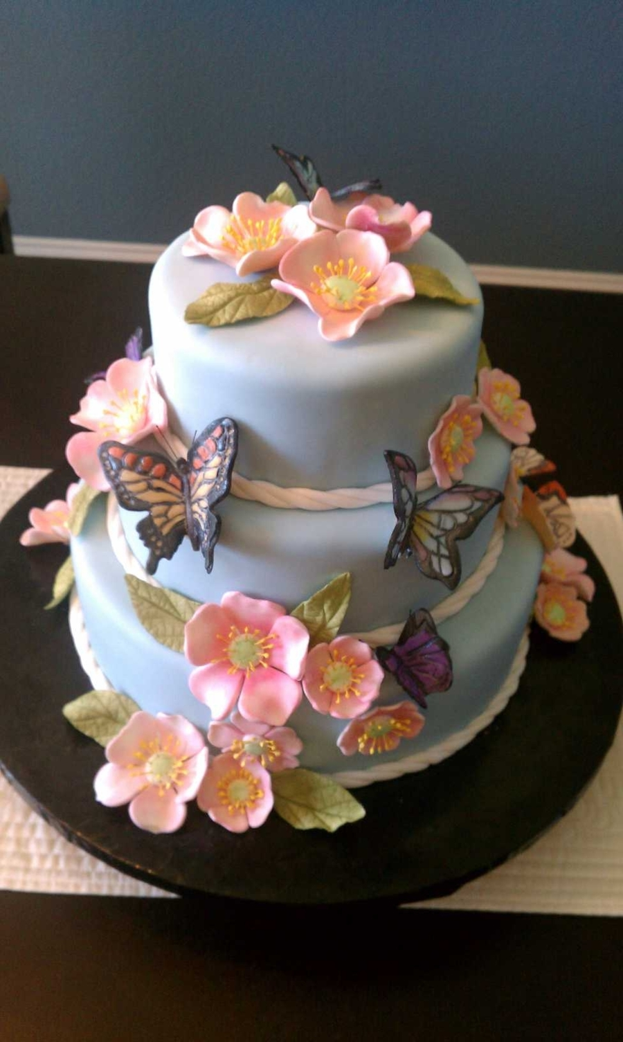 Spring Butterfly Cake on Cake Central