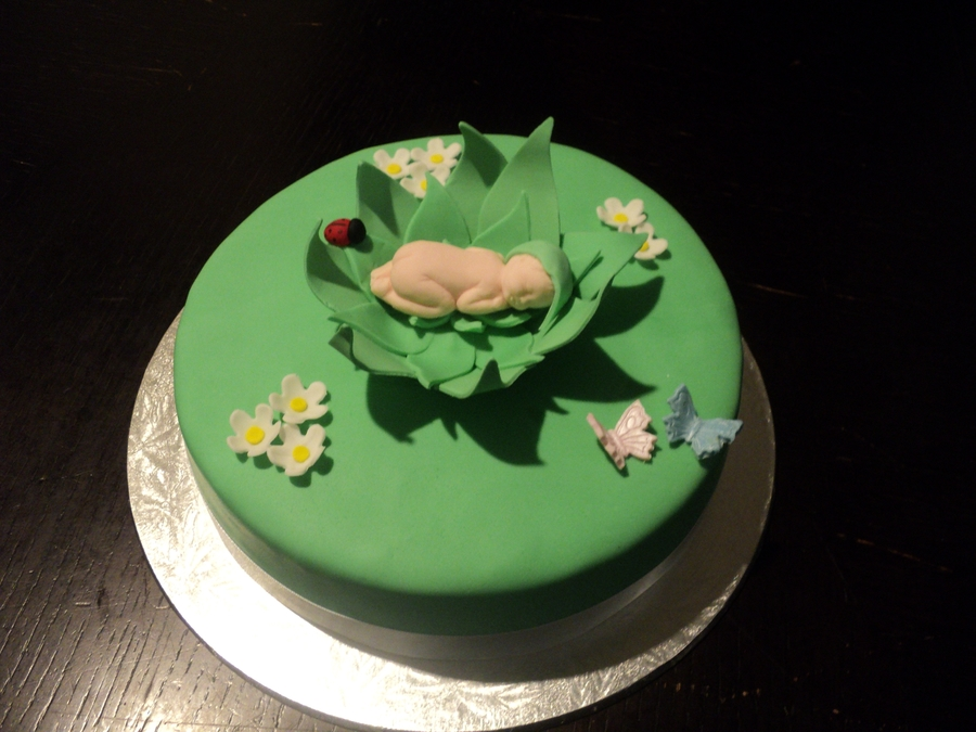 Baby In Leaf Cocoon on Cake Central